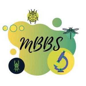 Mbbs-in-Ukraine-course-illustration