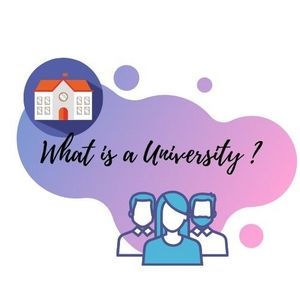 What is a university definition by iGraduate